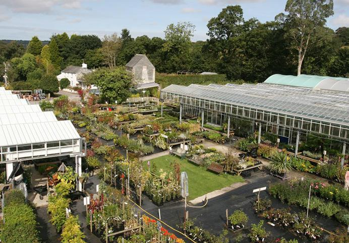 Bodmin Nursery & The Mill Cafe