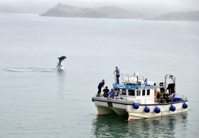 Newquay Sea Safaris & Fishing